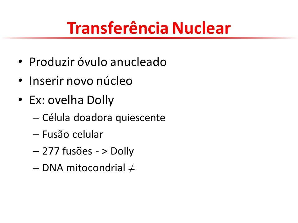 Transferência Nuclear Produzir óvulo anucleado Inserir novo núcleo Ex: ovelha Dolly – Célula doadora quiescente – Fusão celular – 277 fusões - > Dolly