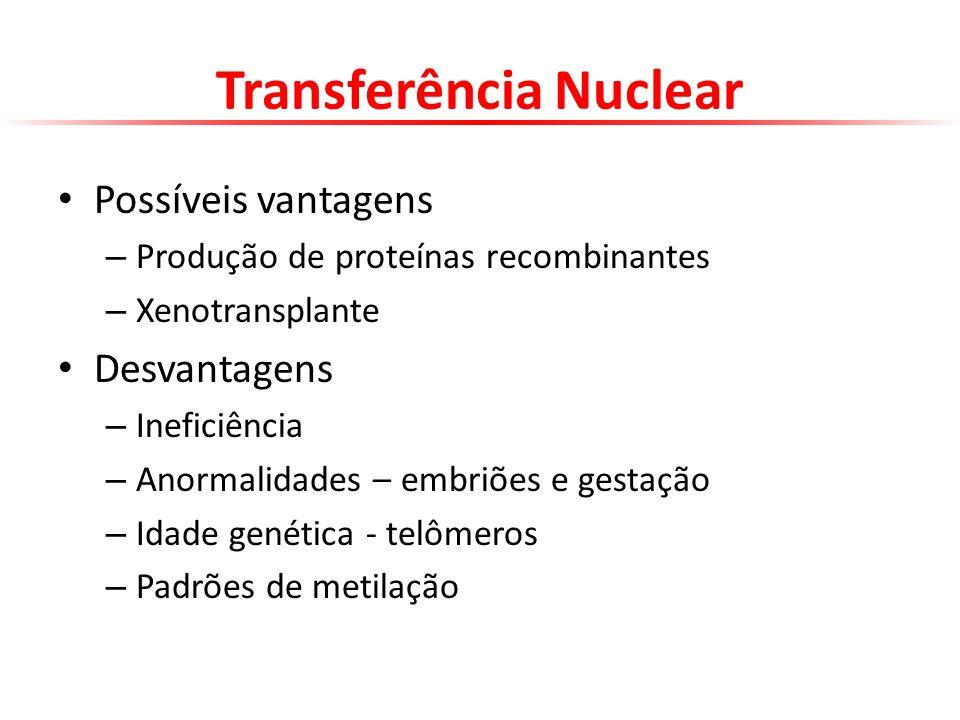 Transferência Nuclear Possíveis vantagens – Produção de proteínas recombinantes – Xenotransplante Desvantagens – Ineficiência – Anormalidades – embriõ
