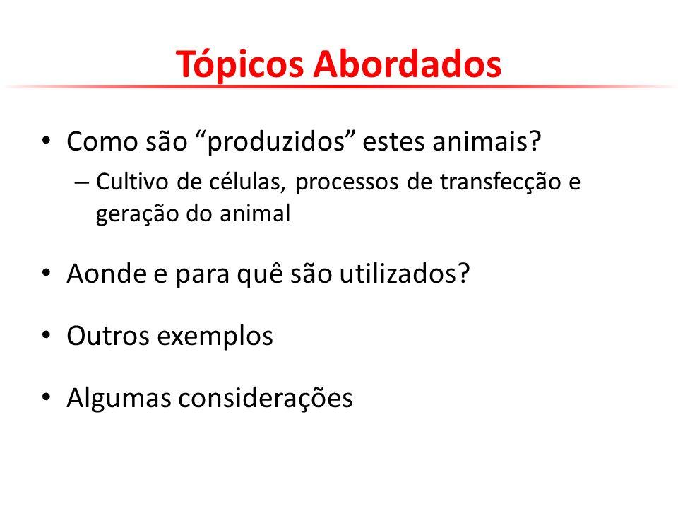 CAPURRO, M.L.; et al.Mosquitos transgênicos. Biotecnologia Ciência & Desenvolvimento, 2001.