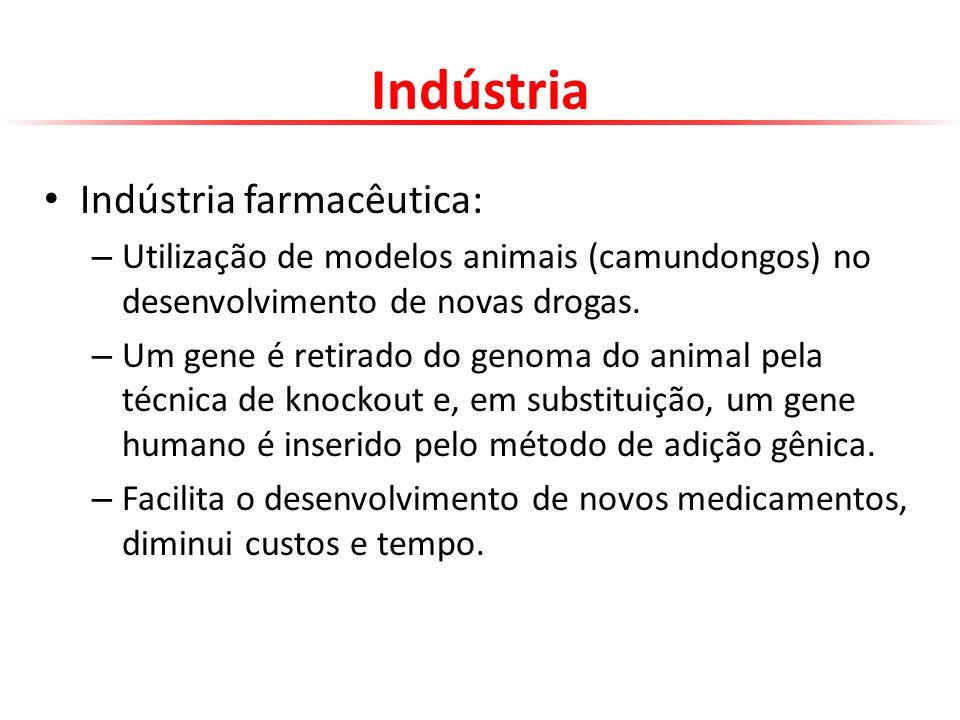 Indústria Indústria farmacêutica: – Utilização de modelos animais (camundongos) no desenvolvimento de novas drogas. – Um gene é retirado do genoma do