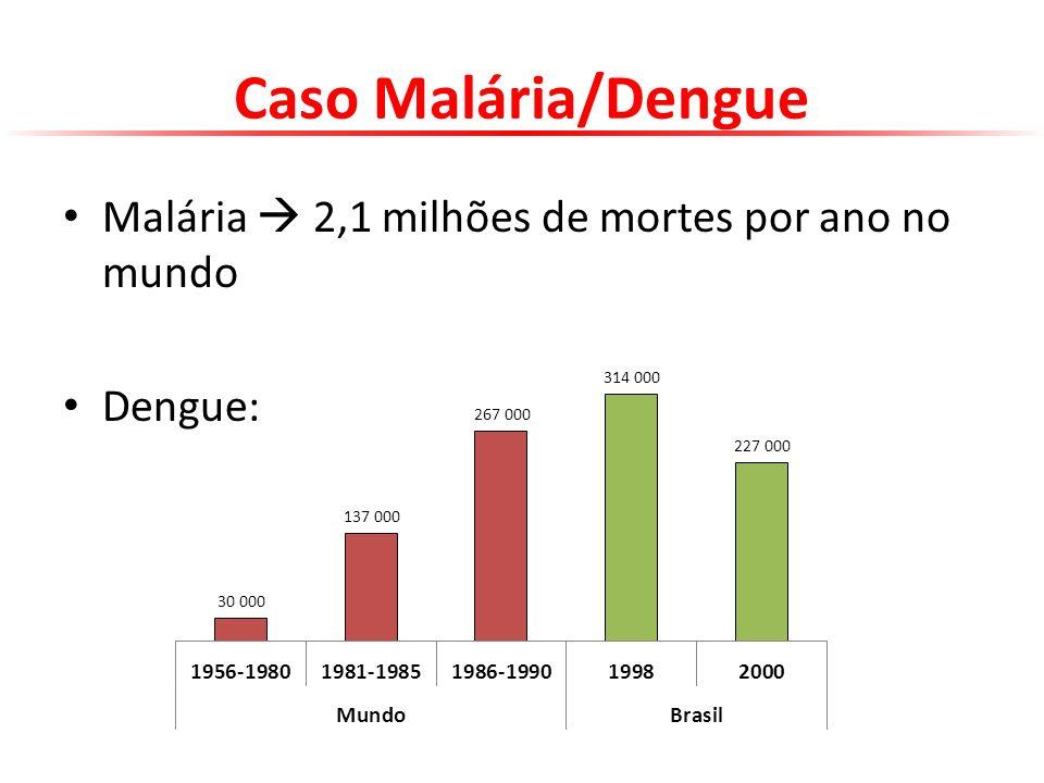 Caso Malária/Dengue Malária 2,1 milhões de mortes por ano no mundo Dengue: