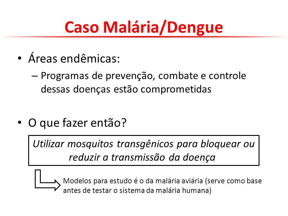 Caso Malária/Dengue Áreas endêmicas: – Programas de prevenção, combate e controle dessas doenças estão comprometidas O que fazer então? Utilizar mosqu