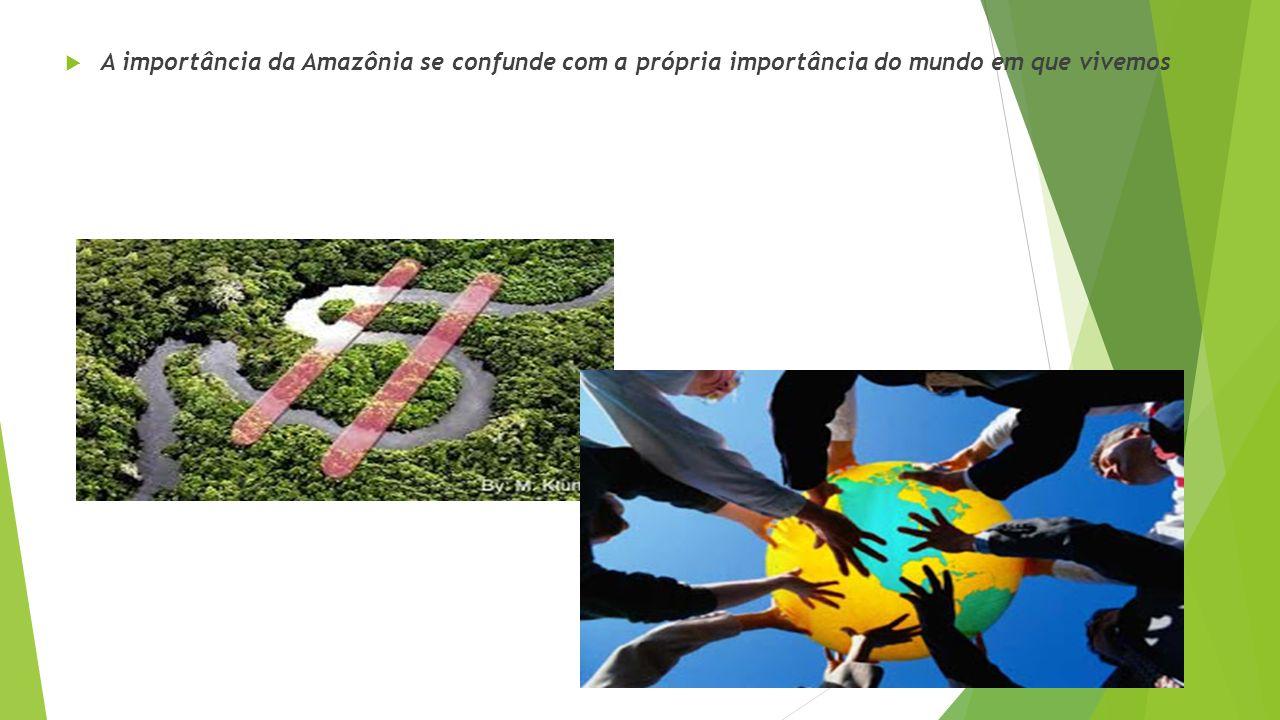 A importância da Amazônia se confunde com a própria importância do mundo em que vivemos