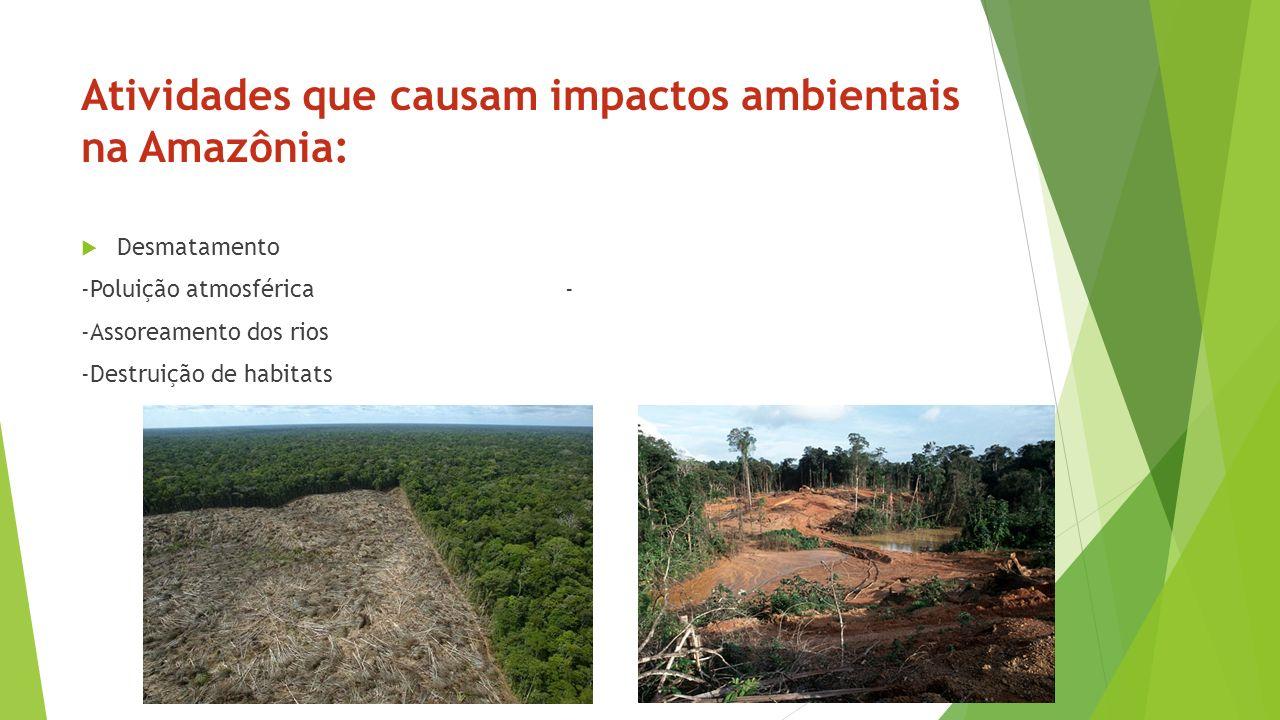 Atividades que causam impactos ambientais na Amazônia: Desmatamento -Poluição atmosférica - -Assoreamento dos rios -Destruição de habitats