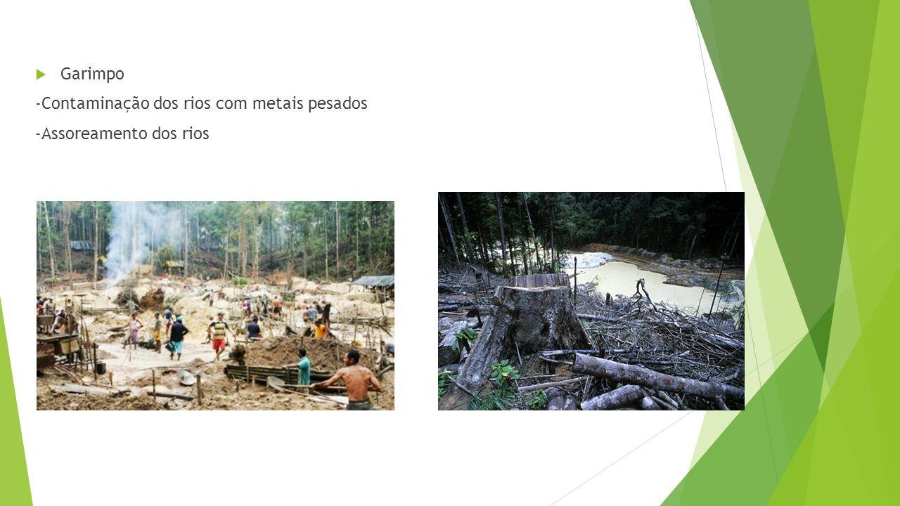 Garimpo -Contaminação dos rios com metais pesados -Assoreamento dos rios