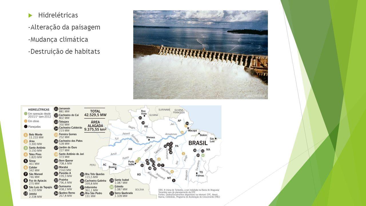 Hidrelétricas -Alteração da paisagem -Mudança climática -Destruição de habitats