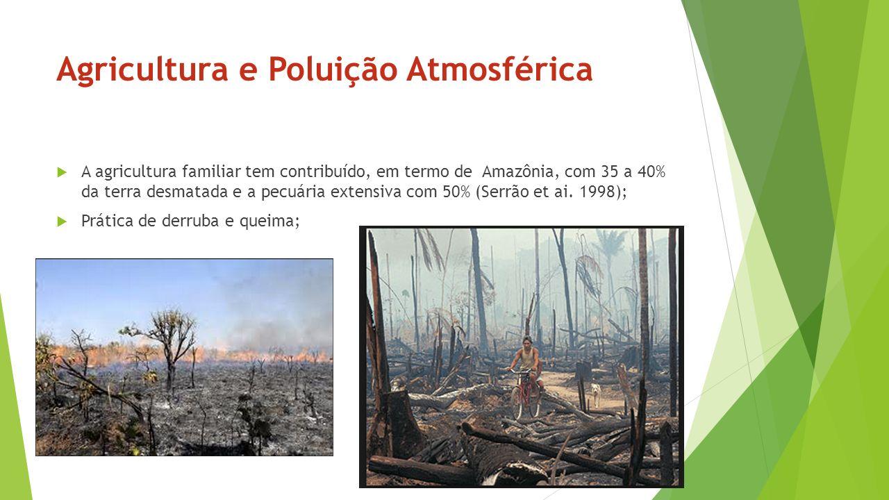 Agricultura e Poluição Atmosférica A agricultura familiar tem contribuído, em termo de Amazônia, com 35 a 40% da terra desmatada e a pecuária extensiv