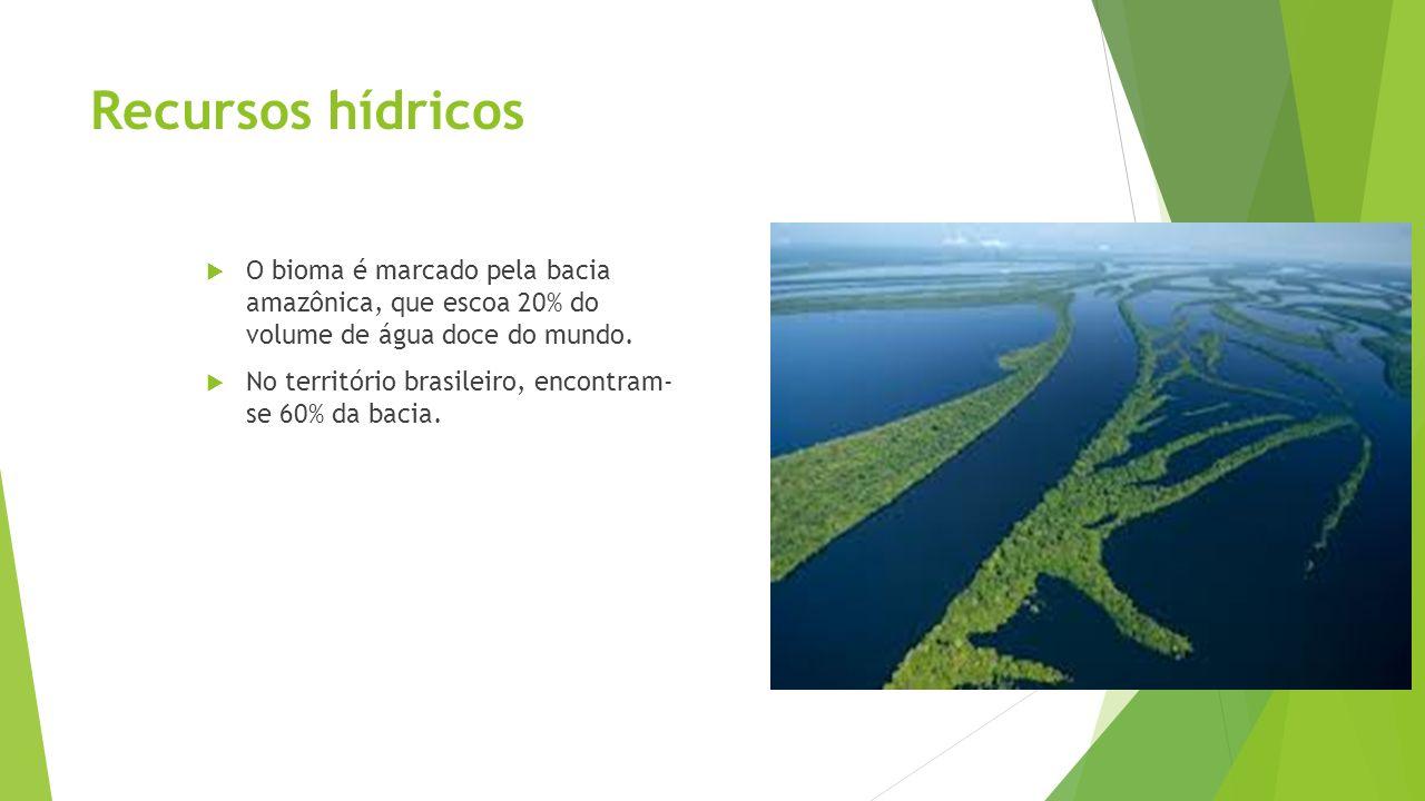 Recursos hídricos O bioma é marcado pela bacia amazônica, que escoa 20% do volume de água doce do mundo. No território brasileiro, encontram- se 60% d