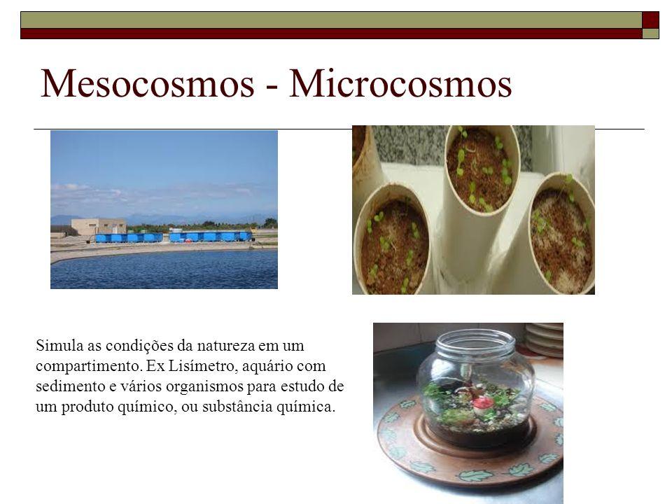 Mesocosmos - Microcosmos Simula as condições da natureza em um compartimento. Ex Lisímetro, aquário com sedimento e vários organismos para estudo de u