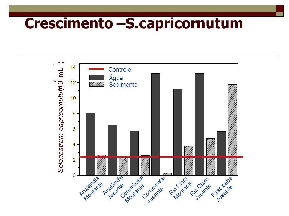Crescimento –S.capricornutum 0 2 4 6 8 10 12 14 Selenastrum capricornutum (10 5 mL ) Piracicaba Jusante Rio Claro Jusante Rio Claro Montante Corumbata