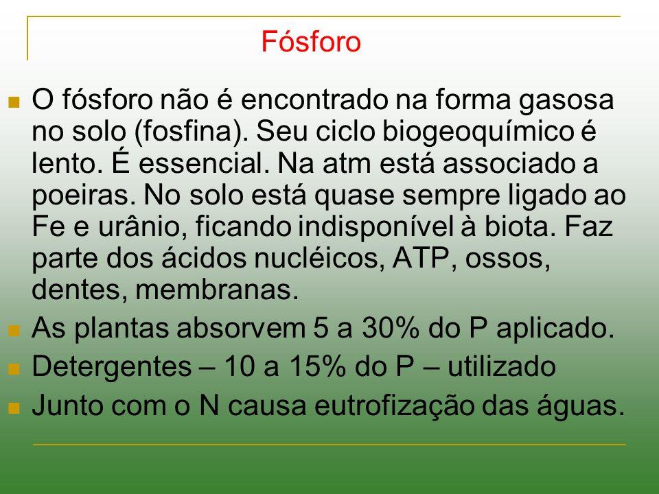Fósforo O fósforo não é encontrado na forma gasosa no solo (fosfina). Seu ciclo biogeoquímico é lento. É essencial. Na atm está associado a poeiras. N