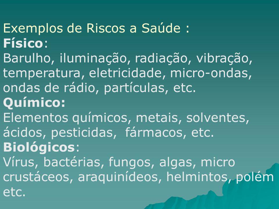 Exemplos de Riscos a Saúde : Físico: Barulho, iluminação, radiação, vibração, temperatura, eletricidade, micro-ondas, ondas de rádio, partículas, etc.