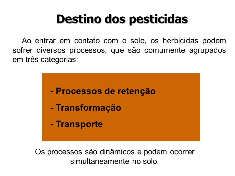 Destino dos pesticidas Ao entrar em contato com o solo, os herbicidas podem sofrer diversos processos, que são comumente agrupados em três categorias: