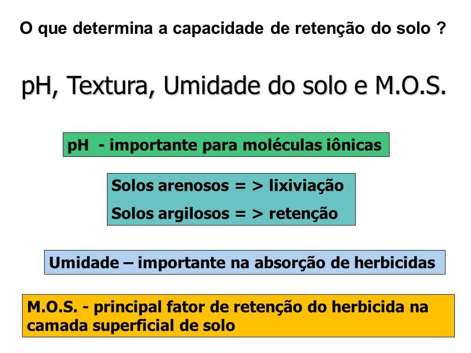 Processos Perdas totais máximas (%) Volatilização90 Lixiviação4 Escoamento superficial10 Absorção10 Perdas totais máximas de pesticidas, sob condições agrícolas normais Fontes: Oliveira Júnior (2002), Plimmer (1992)
