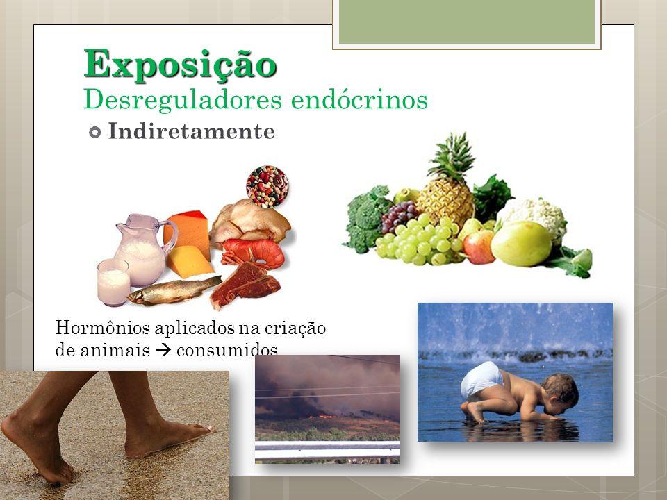 Exposição Hormônios aplicados na criação de animais consumidos Indiretamente