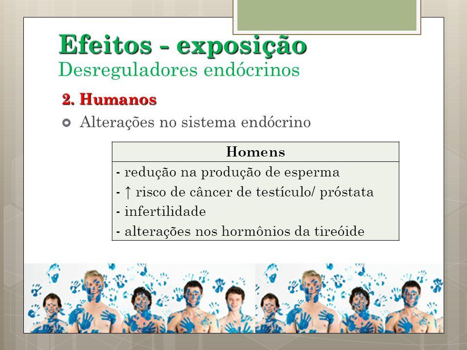 2. Humanos Alterações no sistema endócrino Efeitos - exposição Desreguladores endócrinosHomens - redução na produção de esperma - risco de câncer de t
