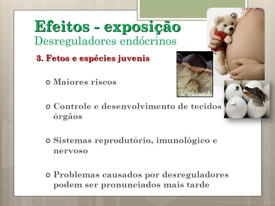 3. Fetos e espécies juvenis Maiores riscos Controle e desenvolvimento de tecidos e órgãos Sistemas reprodutório, imunológico e nervoso Problemas causa
