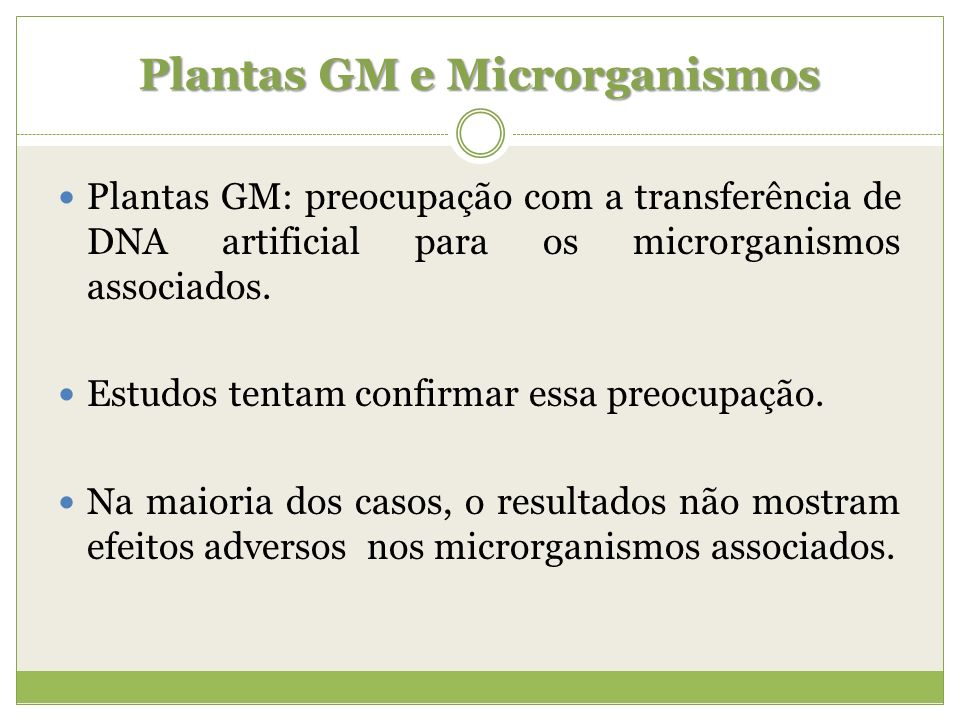 Plantas GM e Microrganismos Plantas GM: preocupação com a transferência de DNA artificial para os microrganismos associados. Estudos tentam confirmar
