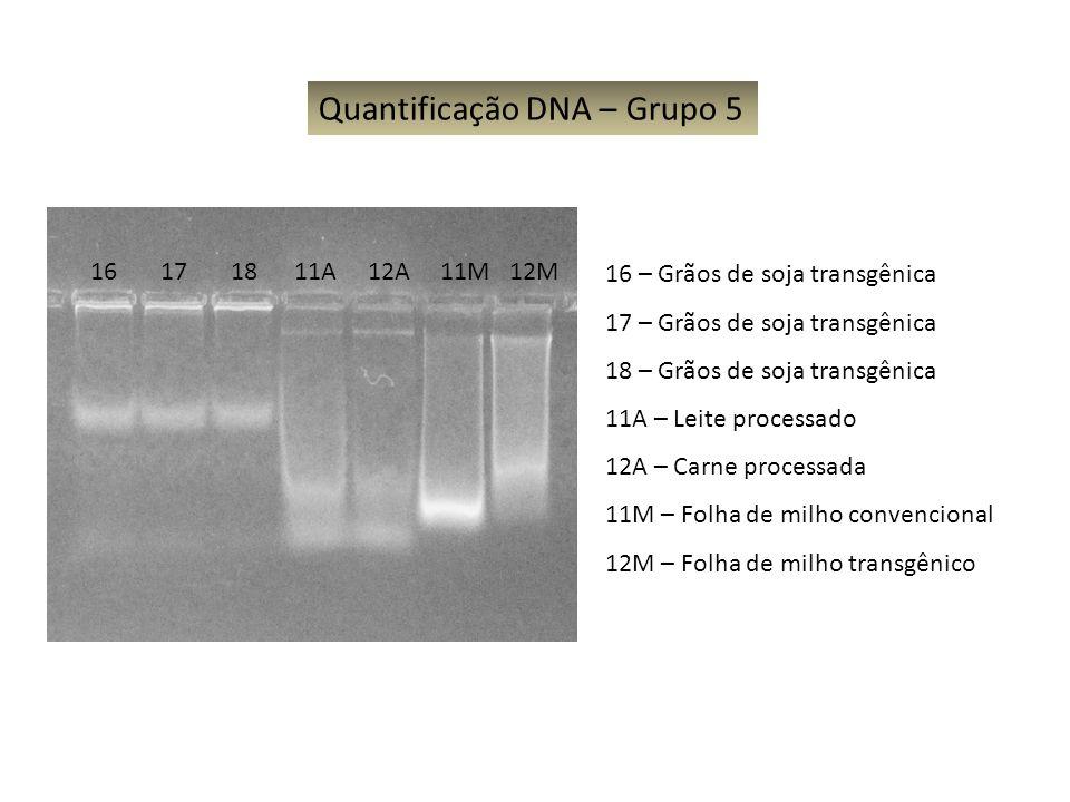 16 17 18 11A 12A 11M 12M Quantificação DNA – Grupo 5 16 – Grãos de soja transgênica 17 – Grãos de soja transgênica 18 – Grãos de soja transgênica 11A