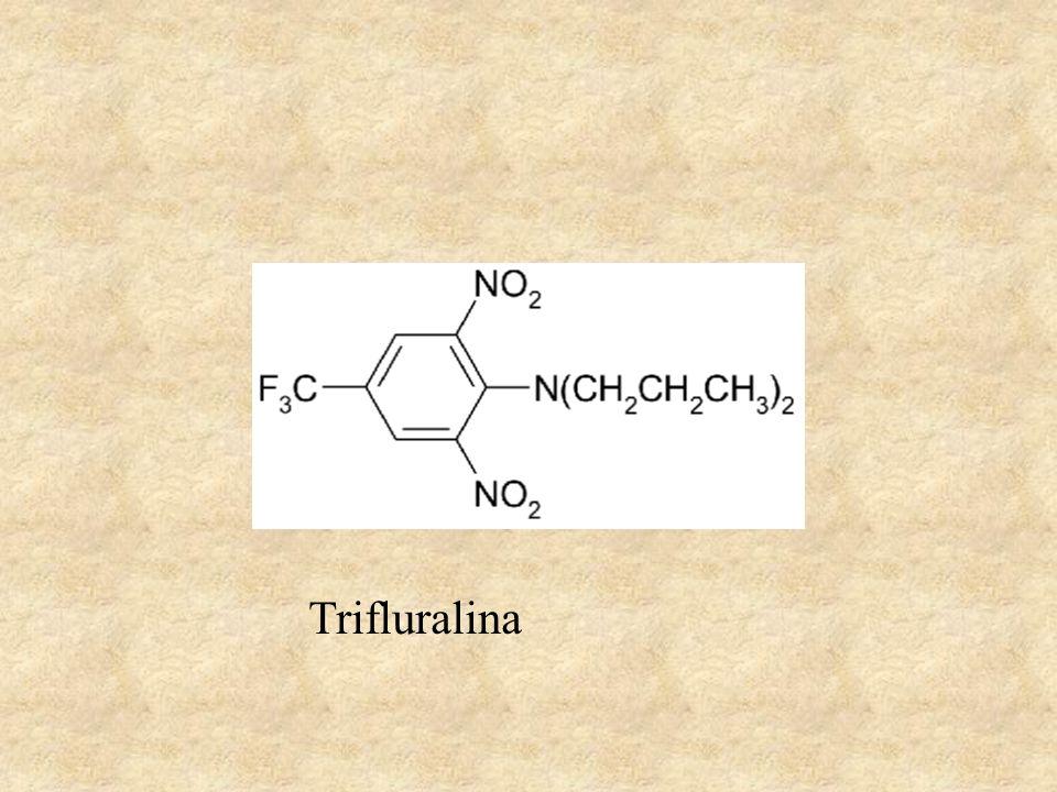Trifluralina