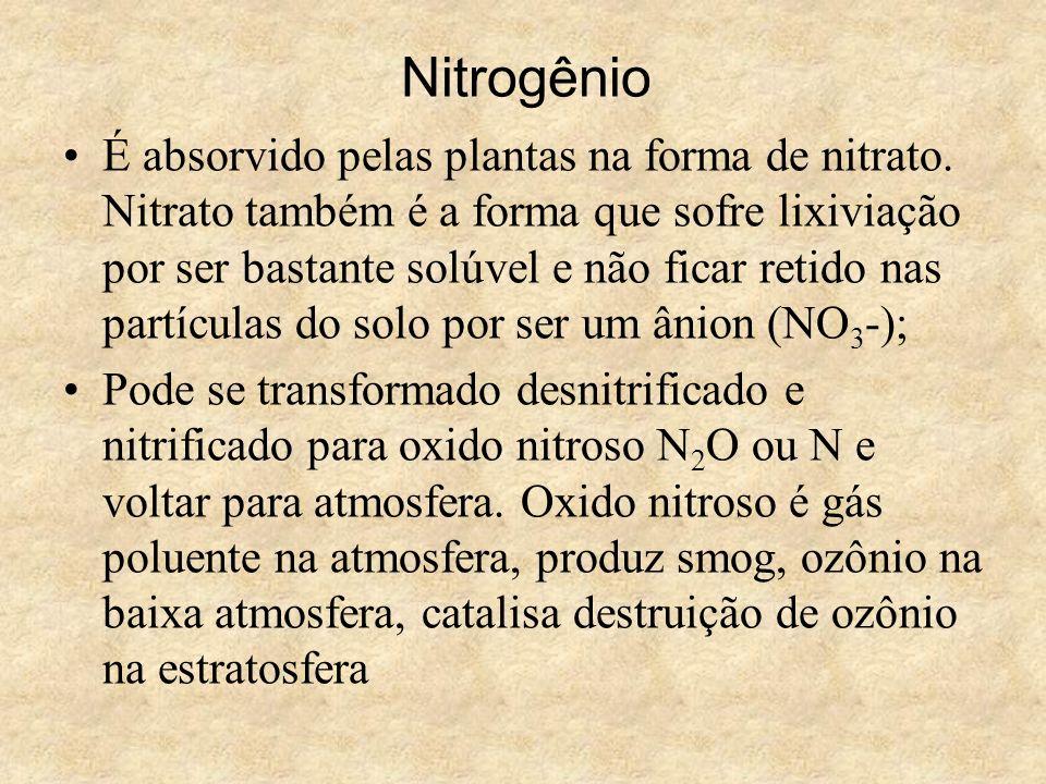 Nitrogênio É absorvido pelas plantas na forma de nitrato. Nitrato também é a forma que sofre lixiviação por ser bastante solúvel e não ficar retido na