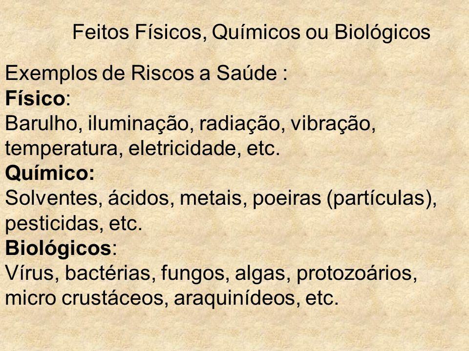 Exemplos de Riscos a Saúde : Físico: Barulho, iluminação, radiação, vibração, temperatura, eletricidade, etc. Químico: Solventes, ácidos, metais, poei