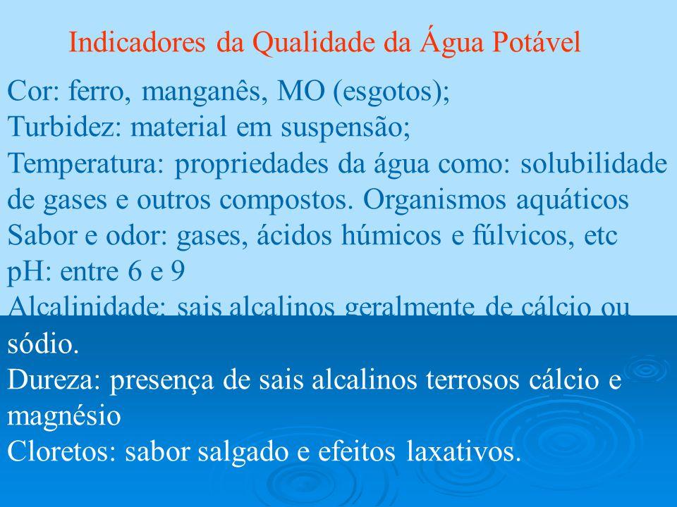 Indicadores da Qualidade da Água Potável Cor: ferro, manganês, MO (esgotos); Turbidez: material em suspensão; Temperatura: propriedades da água como: