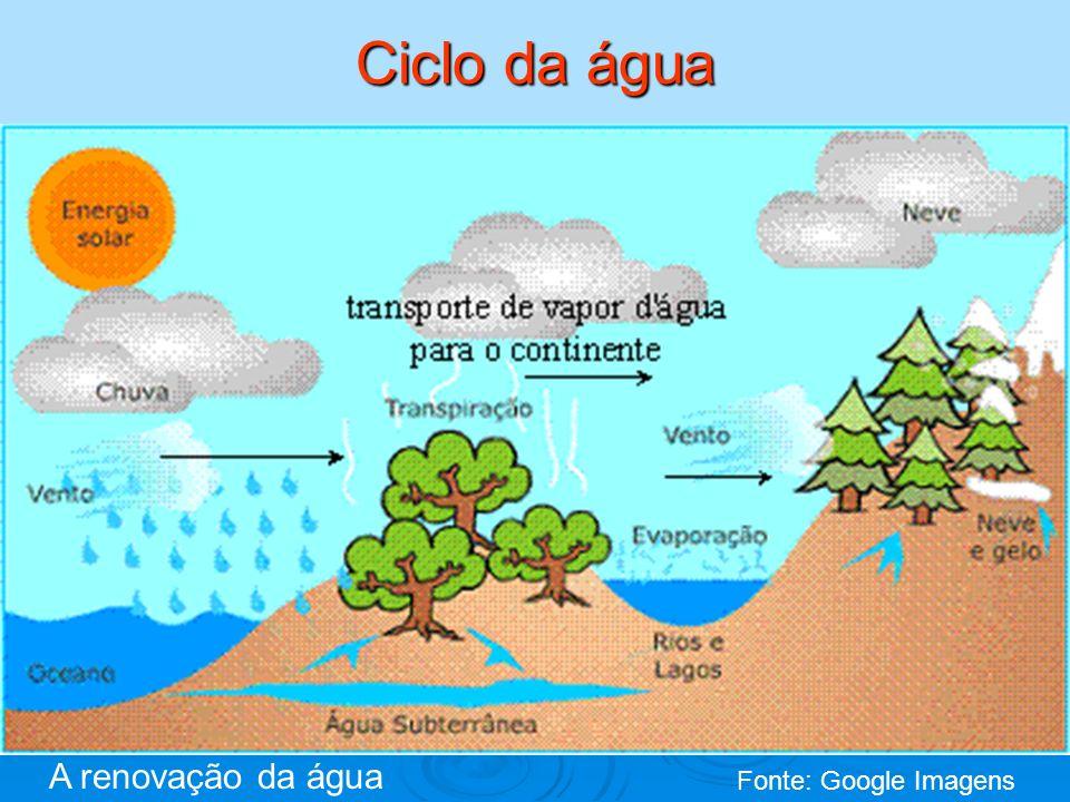 Ciclo da água Fonte: Google Imagens A renovação da água