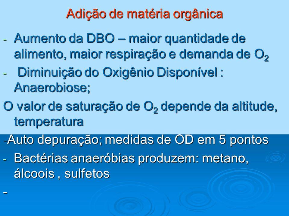 Adição de matéria orgânica - Aumento da DBO – maior quantidade de alimento, maior respiração e demanda de O 2 - Diminuição do Oxigênio Disponível : An