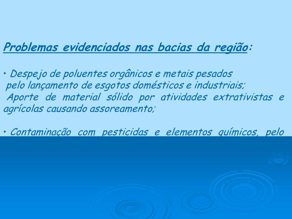 Problemas evidenciados nas bacias da região: Despejo de poluentes orgânicos e metais pesados pelo lançamento de esgotos domésticos e industriais; Apor