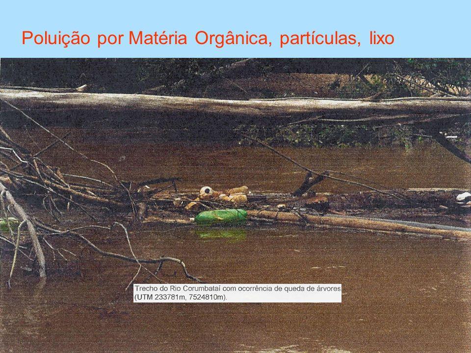 Poluição por Matéria Orgânica, partículas, lixo