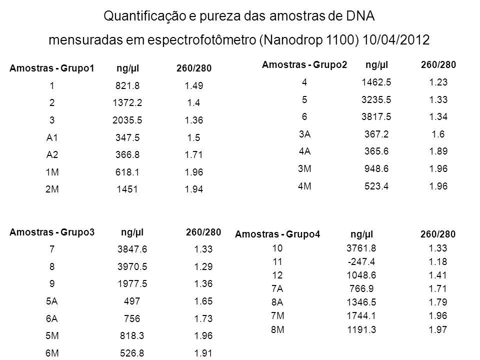 Quantificação e pureza das amostras de DNA mensuradas em espectrofotômetro (Nanodrop 1100) 10/04/2012 Amostras - Grupo1ng/µl260/280 1821.81.49 21372.2