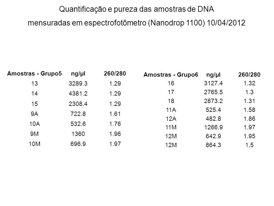 Quantificação e pureza das amostras de DNA mensuradas em espectrofotômetro (Nanodrop 1100) 10/04/2012 Amostras - Grupo5ng/µl260/280 133289.31.29 14438