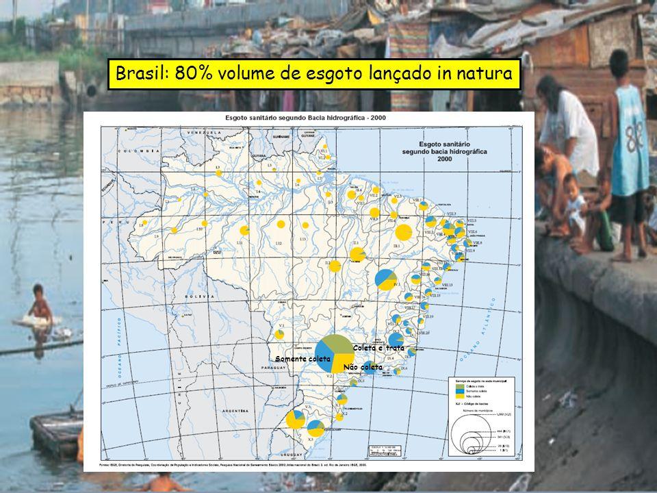 Brasil: 80% volume de esgoto lançado in natura Coleta e trata Somente coleta Não coleta