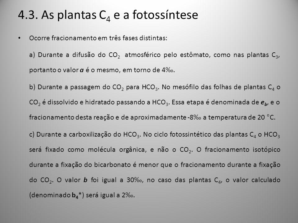 4.3. As plantas C 4 e a fotossíntese Ocorre fracionamento em três fases distintas: a) Durante a difusão do CO 2 atmosférico pelo estômato, como nas pl