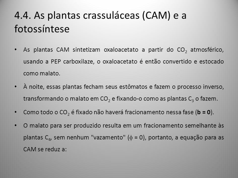 4.4. As plantas crassuláceas (CAM) e a fotossíntese As plantas CAM sintetizam oxaloacetato a partir do CO 2 atmosférico, usando a PEP carboxilaze, o o