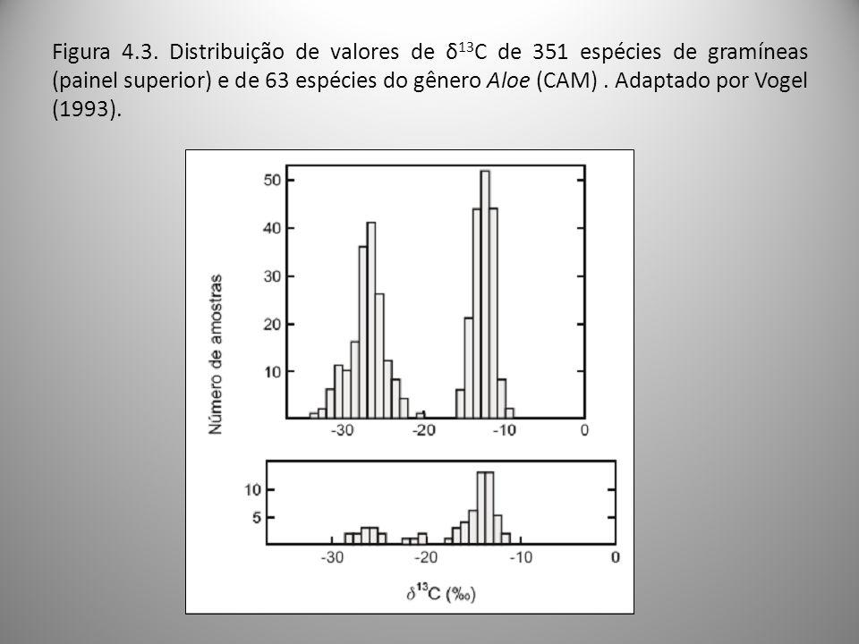 Figura 4.3. Distribuição de valores de δ 13 C de 351 espécies de gramíneas (painel superior) e de 63 espécies do gênero Aloe (CAM). Adaptado por Vogel