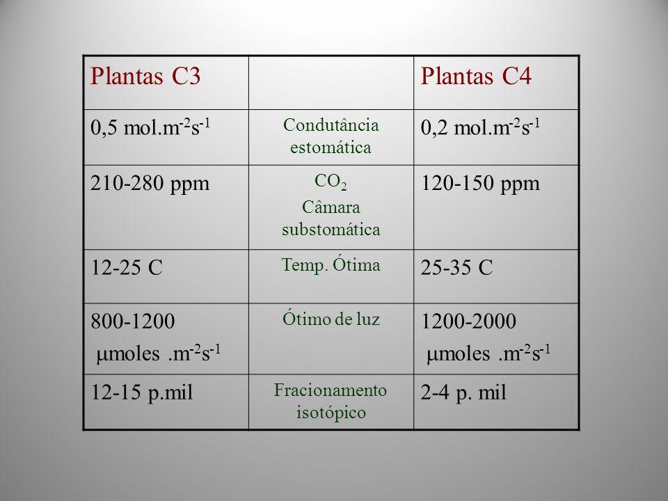 Plantas C3Plantas C4 0,5 mol.m -2 s -1 Condutância estomática 0,2 mol.m -2 s -1 210-280 ppm CO 2 Câmara substomática 120-150 ppm 12-25 C Temp. Ótima 2