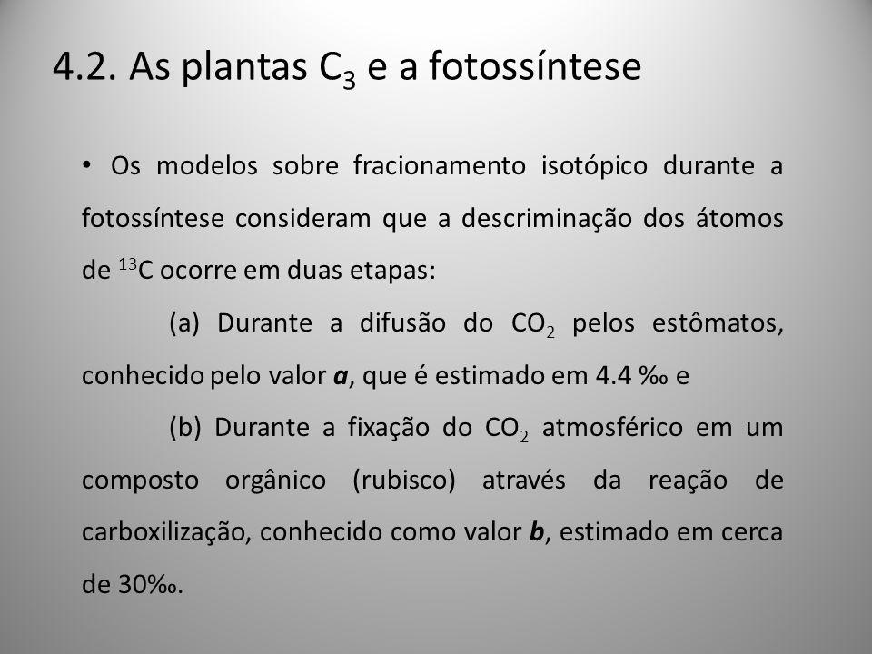4.2. As plantas C 3 e a fotossíntese Os modelos sobre fracionamento isotópico durante a fotossíntese consideram que a descriminação dos átomos de 13 C