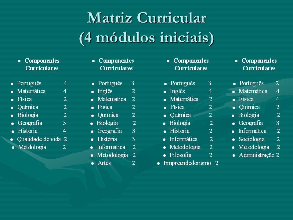 Matriz Curricular (4 módulos iniciais)