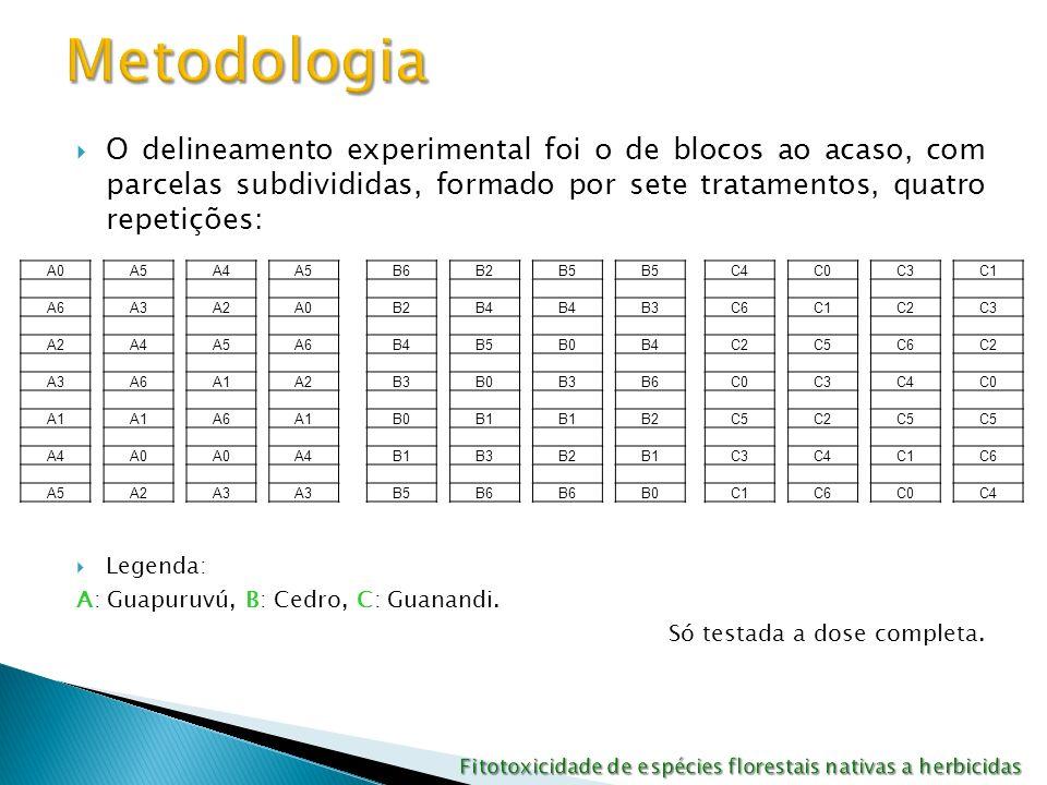 Os produtos utilizados foram: - 0: Testemunha - 1: maturador etil-trinexapac (300 g i.a ha -1 ) : moddus - 2: diuron + hexazinone (1170 + 330 g i.a ha -1 ): velpar - 3: diuron + hexazinone (1330 + 160 g i.a ha -1 ): advance - 4: clomazone + ametrina (1500 + 1000 g ha -1 ): sinerge - 5: ametrina (3000 g i.a ha -1 ): guapax - 6: metribuzin (1920 g i.a ha -1 ): sencor