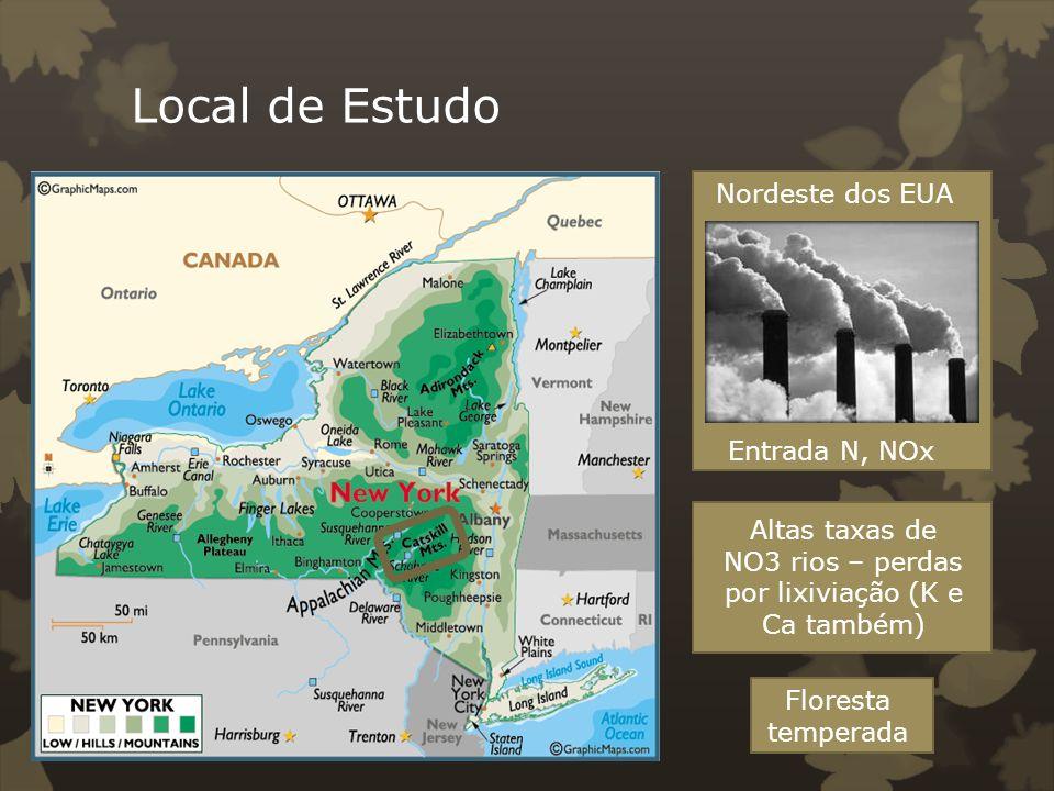 Local de Estudo Inceptisols (Cambissolo) – Solos rasos com altos teores de minerais primários e bem drenado Acidez moderada à alta 60% Areia, 30% silte, 10% argila.