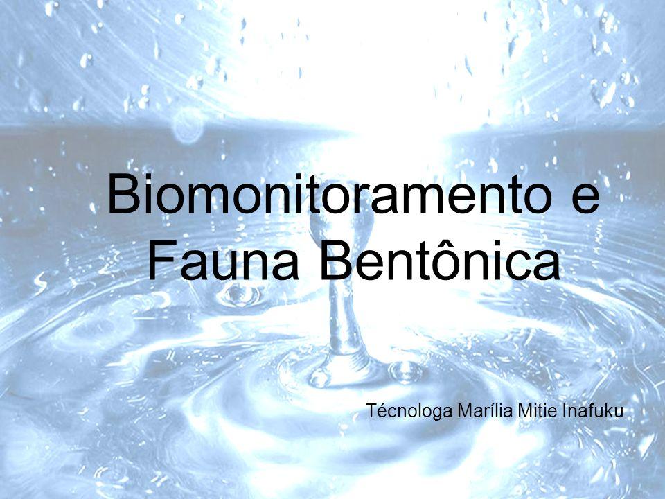 Biomonitoramento e Fauna Bentônica Técnologa Marília Mitie Inafuku