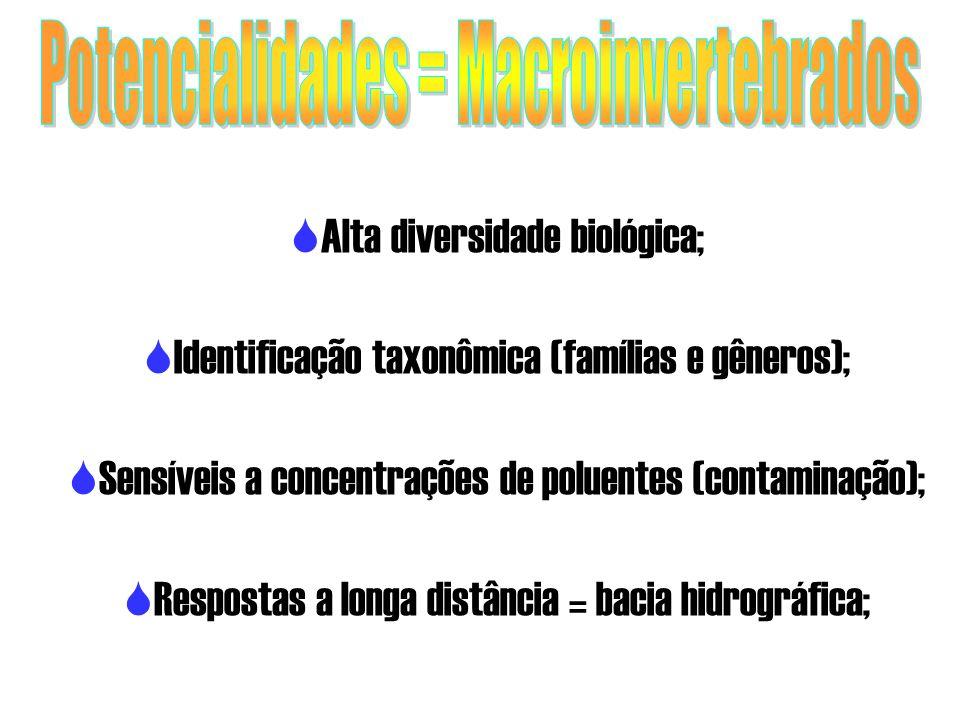 Alta diversidade biológica; Identificação taxonômica (famílias e gêneros); Sensíveis a concentrações de poluentes (contaminação); Respostas a longa di