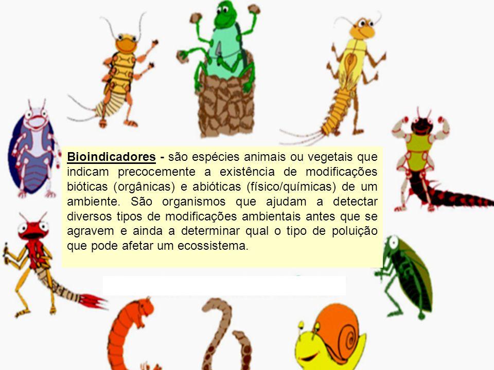 Bioindicadores - são espécies animais ou vegetais que indicam precocemente a existência de modificações bióticas (orgânicas) e abióticas (físico/quími