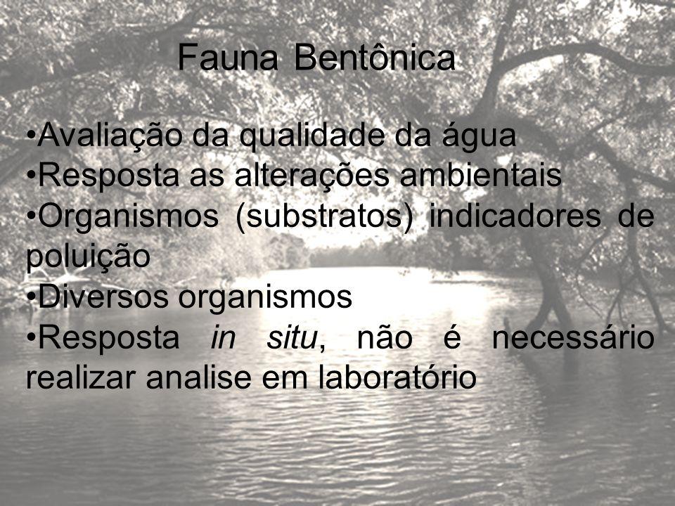 Fauna Bentônica Avaliação da qualidade da água Resposta as alterações ambientais Organismos (substratos) indicadores de poluição Diversos organismos R