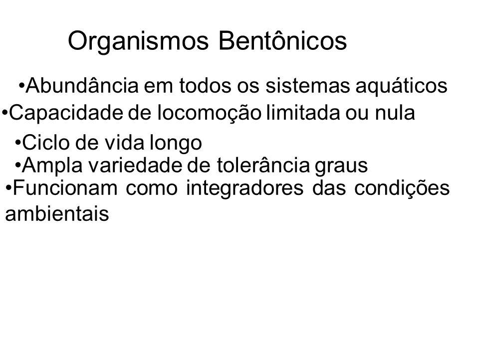 Organismos Bentônicos Abundância em todos os sistemas aquáticos Capacidade de locomoção limitada ou nula Ciclo de vida longo Ampla variedade de tolerâ