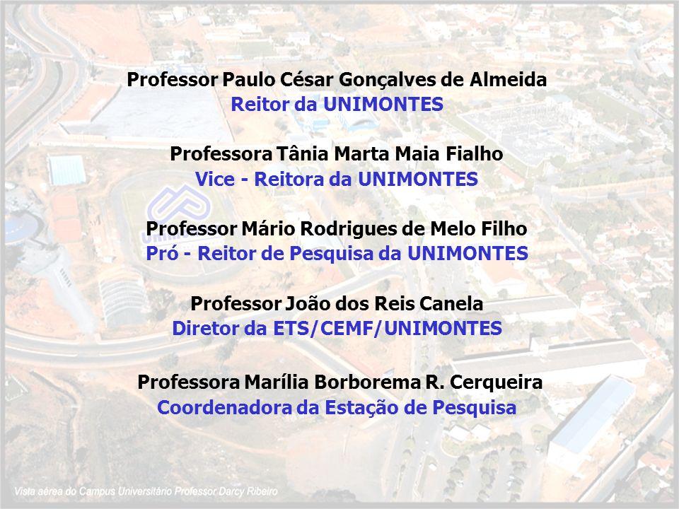 Professor Paulo César Gonçalves de Almeida Reitor da UNIMONTES Professora Tânia Marta Maia Fialho Vice - Reitora da UNIMONTES Professor Mário Rodrigue