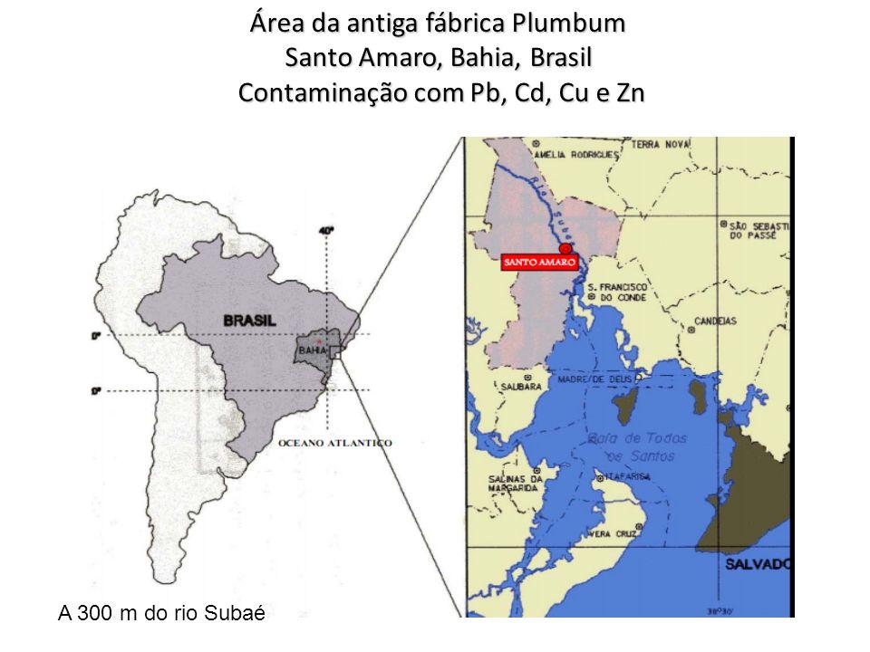 Área da antiga fábrica Plumbum Santo Amaro, Bahia, Brasil Contaminação com Pb, Cd, Cu e Zn Contaminação com Pb, Cd, Cu e Zn A 300 m do rio Subaé