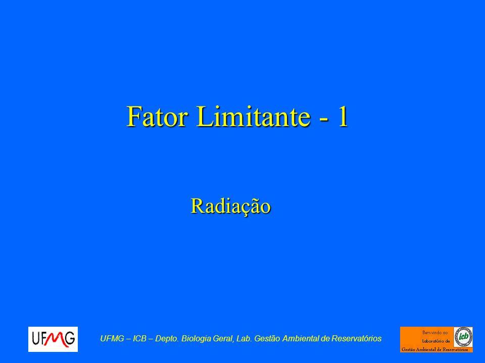 Fator Limitante - 1 Radiação UFMG – ICB – Depto. Biologia Geral, Lab. Gestão Ambiental de Reservatórios
